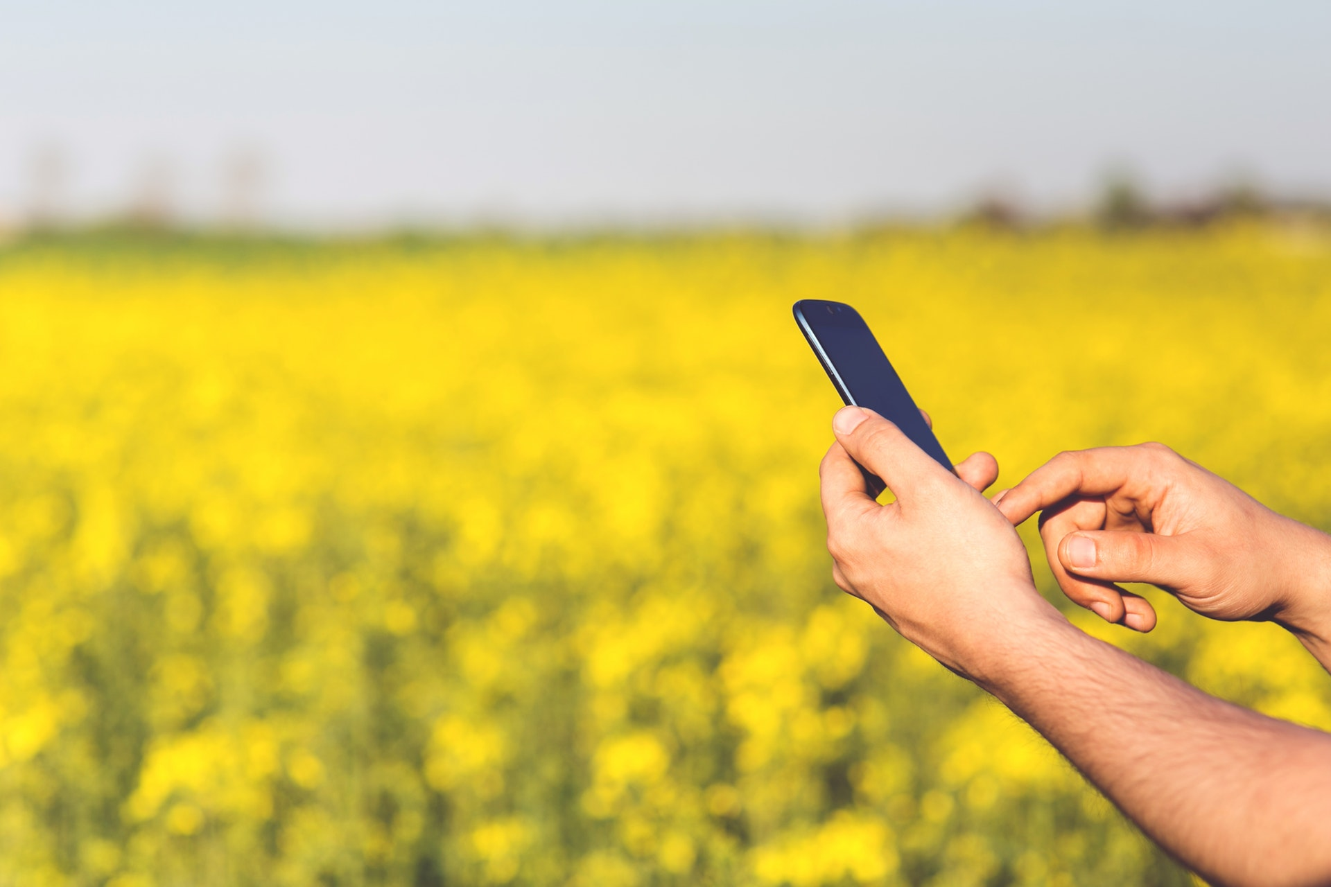 5 Things AgTech Investors Are Looking for in AgTech Startups - StepUp